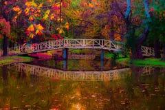 Bunter Autumn Park Fairytale lizenzfreie stockbilder