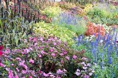 Bunter Blumengarten. stockbilder
