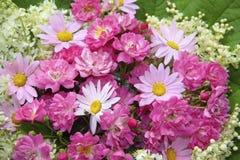 Bunter Blumenhintergrund mit rosa Rosen, Gänseblümchen Stockfotografie