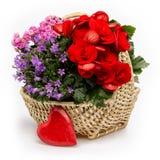 Bunter Blumenkorb mit rotem Herzen Stockfotografie