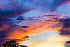 Bunter Dämmerungshimmel nach Regen auf Abendzeit während des Sonnenuntergangs hinter einem Baumschattenbild Stockfoto