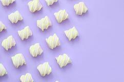 Bunter Eibisch ausgebreitet auf violettem Papierhintergrund kreative Pastellbeschaffenheiten mit Kopienraum minimal lizenzfreie abbildung