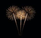 Bunter Feuerwerke Blumenstrauß Stockbilder