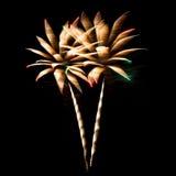 Bunter Feuerwerke Blumenstrauß Stockfoto