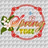Bunter Frühlingszeit-Szenenhintergrund mit Blüte blüht Lizenzfreie Stockbilder