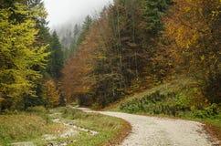 Bunter Herbst in den Bergen lizenzfreies stockfoto