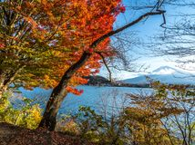 Bunter Herbst in Fuji-Berg in Japan lizenzfreies stockfoto