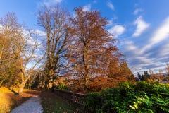 Bunter Herbst im Park Lizenzfreies Stockbild