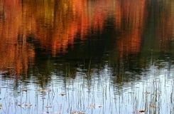 Bunter Herbst in Neu-England Lizenzfreies Stockfoto
