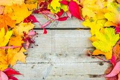Bunter Herbsthintergrund orange und gelber Herbstlaub mit Kopienraum stockbild