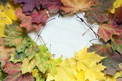 Bunter Herbsthintergrund von Ahornblättern Lizenzfreies Stockfoto