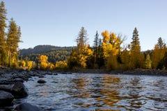 Bunter Herbstlaub zeichnet einen kalten sich schnell bewegenden Fluss stockbild