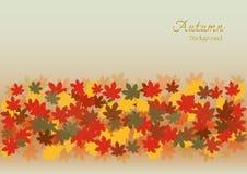 Bunter Herbstsaison- und Feiertagshintergrund Lizenzfreie Stockbilder