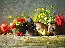 Bunter Herbstschatten mit Blättern und Früchten Lizenzfreies Stockfoto