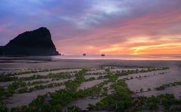 Bunter Himmel auf Sonnenaufgang und Leute am Strand Stockfotos