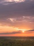 Bunter Himmel und Forest Silhouette bei Sonnenuntergang stockfoto