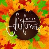 Bunter Hintergrund mit Ahornblättern und Beschriftung hallo Herbst Lizenzfreies Stockfoto
