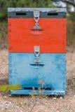 Bunter Honey Beehive im Wiesen-Abschluss oben Rot, Blau und Grey Painted Bee Hive Next zu einem Kiefern-Wald im Sommer Lizenzfreie Stockfotos