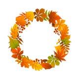 Bunter Kranz der Herbstfallurlaubniederlassungs-Zweige stock abbildung