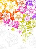 Bunter mit Blumenhintergrund Stockfoto