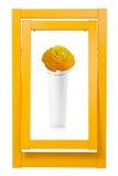Bunter Rahmen und Vase Lizenzfreie Stockfotos