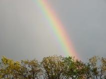 Bunter Regenbogen Stockfotos