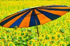 bunter Regenschirm auf dem Sonnenblumegebiet Lizenzfreies Stockfoto