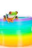 Bunter roter gemusterter Baumfrosch auf einem Spielzeug Stockfotografie