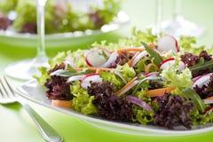 Bunter Salat Lizenzfreies Stockbild