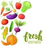 Bunter Satz Gemüse Stockfotografie