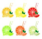 Bunter Satz geschnittene Scheiben von Zitrusfrüchten mit bunten zwei Strohen und grünem Blatt der Orange, Kalk, Pampelmuse, Tange vektor abbildung