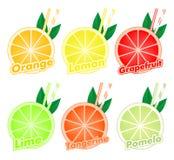 Bunter Satz geschnittene Scheiben von Zitrusfrüchten mit bunten zwei Strohen und grünem Blatt der Orange, Kalk, Pampelmuse, Tange lizenzfreie abbildung