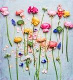 Bunter schöner Garten des Sommers blüht Auswahl auf schäbigem schickem Hintergrund des blauen Türkises, Draufsicht Lizenzfreie Stockbilder