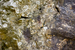Bunter Sedimentgesteinhintergrund Lizenzfreie Stockfotografie
