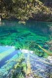 Bunter See in Nationalpark Jiuzhaigou Stockfotografie