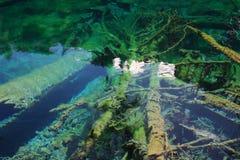 Bunter See in Nationalpark Jiuzhaigou Lizenzfreie Stockbilder