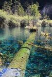 Bunter See in Nationalpark Jiuzhaigou Stockbild