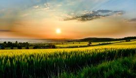 Bunter Sonnenuntergang über dem Feld mit Himmel Stockfotografie