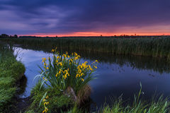 Bunter Sonnenuntergang über dem kleinen Fluss Stockbilder