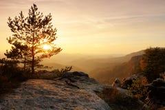 Bunter Sonnenuntergang in einem felsigen Park des schönen Herbstes Verbogene Bäume auf Spitzen über tiefem Tal Glättung von orang Lizenzfreie Stockbilder