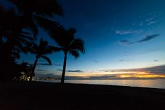 Bunter Sonnenuntergang mit KokosnussPalmeschattenbildern Stockbild