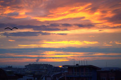 Bunter Sonnenuntergang und fliegender schwarzer Vogel über einer Stadt Lizenzfreie Stockfotos