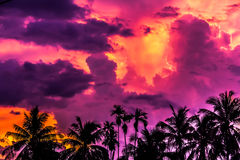 Bunter Sonnenuntergang in Vietnam Lizenzfreies Stockbild
