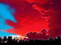 Bunter Sonnenunterganghimmel über dem Wald Skyscape mit den flaumigen und glatten Wolken Lizenzfreies Stockbild