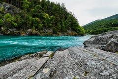 Bunter Türkisfluß und -ufer mit Felsen und Bäumen in Norwegen Stockbilder