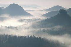 Bunter Tagesanbruch in einer schönen hügeligen Landschaft Spitzen von Hügeln haften heraus vom Nebel Der Nebel schwingt zwischen  Stockbilder