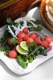 Bunter Wassermelone-Salat Stockfotografie