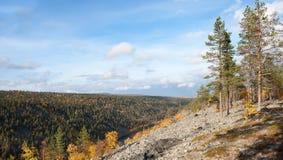 Buntes Autums-Tal in Taiga, Finnland Stockbild
