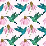 Buntes Blau des Vektors und nahtloses Muster der grünen Kolibris auf weißem Hintergrund vektor abbildung
