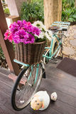 Buntes Blumenkorbfahrrad Stockbild